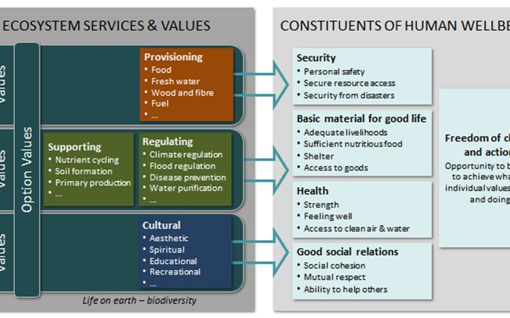 What Are the Main Services Provided by Banks?